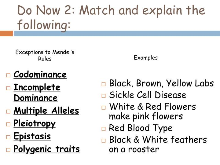 do now 2 match and explain the following n.