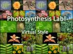 Photosynthesis Lab!