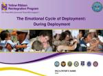 The Emotional Cycle of Deployment: During Deployment