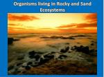 Organisms living in Rocky and Sand Ecosystems