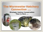The Warmwater Hatchery Connection ….