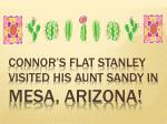 Connor's Flat Stanley visited his Aunt Sandy in Mesa, Arizona!