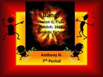 Bang! Sharon G. Flake Publish: 2005 Realistic Fiction