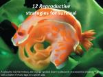 12 Reproductive strategies for survival