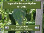 Vegetable Disease Update for 2011