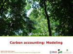 Carbon accounting:  Modeling