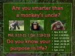 Are you smarter than a monkey's uncle?