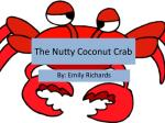 The Nutty Coconut Crab