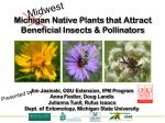 Michigan Native Plants that Attract Beneficial Insects & Pollinators