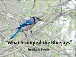 """""""What Stumped the  Bluejays """"  by  Mark Twain"""