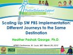 Scaling Up SW PBS Implementation: Different Journeys to the Same Destination
