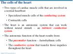 The  cells of the heart