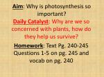 Aim : Why is photosynthesis so important?