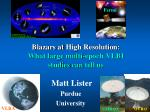 Blazars at High Resolution : What large multi-epoch VLBI studies can tell us