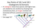 Key Points of 18.2 and 18.3 Cladograms & Domains