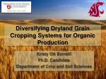 Diversifying Dryland Grain Cropping Systems for Organic Production