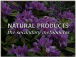 NATURAL PRODUCTS the secondary metabolites