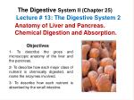Lecture #  13:  The Digestive System 2