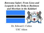 Botswana Safari: From Lions and Leopards in the Delta to Bushmen and Meerkats in the Kalahari