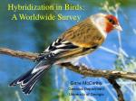 Hybridization in Birds: A Worldwide Survey