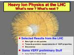 Heavy Ion Physics at the LHC What's new ? What's next ?