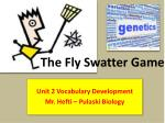 The Fly Swatter Game