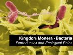 Kingdom Monera - Bacteria Reproduction and Ecological Roles