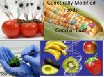 Genetically Modified Foods: Good or Bad?