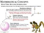 Mathematical Concepts
