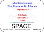 Mindfulness and The Therapeutic Alliance