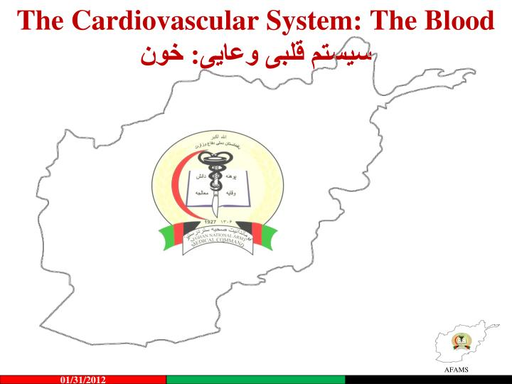 the cardiovascular system the blood n.