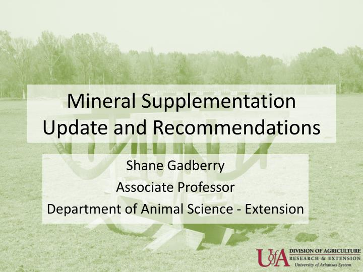 mineral supplementation update and recommendations n.