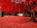 THE LIFE OF CHRIST PART 14