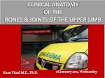 CLINICAL ANATOMY OF THE BONES & JOINTS OF THE UPPER LIMB