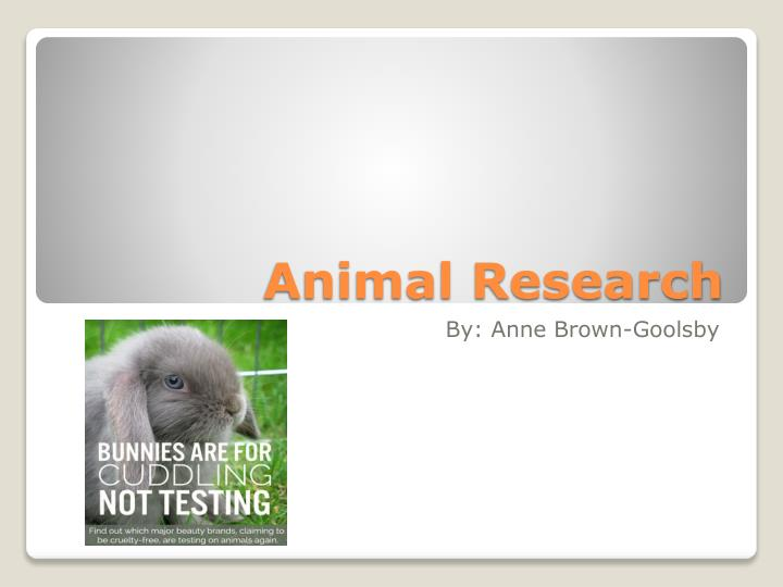animal research n.