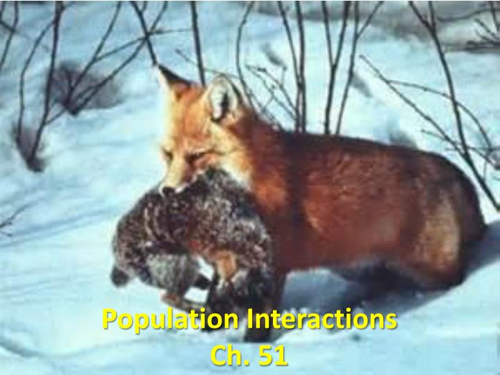 population interactions ch 51 n.