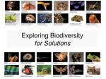 Exploring Biodiversity for Solutions