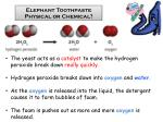 Elephant Toothpaste Physical or Chemical?
