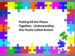 Putting All the Pieces Together: Understanding this Puzzle Called Autism