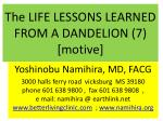 The LIFE LESSONS LEARNED FROM A DANDELION (7) [motive]