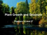 Plant Growth and Structure