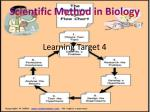 Learning Target 4