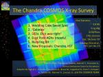 The  Chandra  COSMOS  X-ray Survey