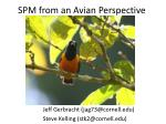 SPM from an Avian Perspective