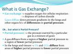 What is Gas Exchange?