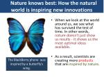 Nature knows best: How the natural world is inspiring new innovations