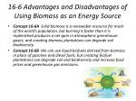 16-6 Advantages and Disadvantages of Using Biomass as an Energy Source