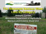 The Minnesota Noxious Weed Lists By Category