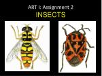 ART I: Assignment 2 INSECTS