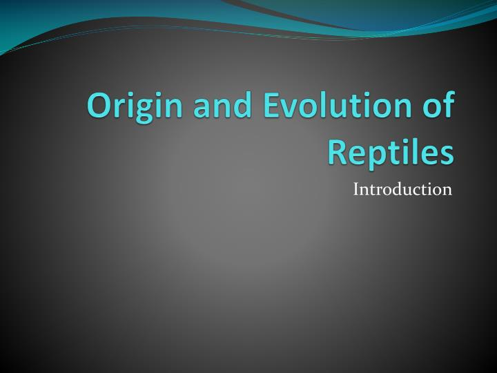 origin and evolution of reptiles n.